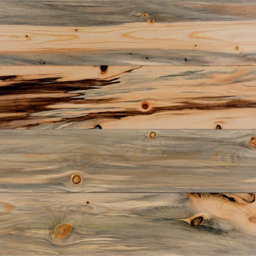 Wood T&G Micro-Bevel - Beetle Kill Pine (aka Blue Stain Pine)