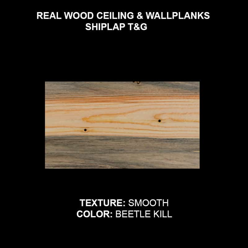 Wood Ceiling & Wall Planks - T&G Shiplap - Smooth - Beetle Kill Pine (Sample)